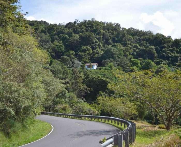 Panama Coffee Farm at Chiriqui